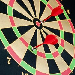 Dart Tarcza magnetyczna z rzutkami 2 stronna